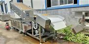 全自動菠菜氣泡超聲波清洗機