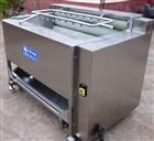 华邦毛辊清洗机 专业鱼类去鳞机器