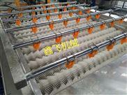 红枣清洗机厂家直销 红枣清洗机成套设备厂家