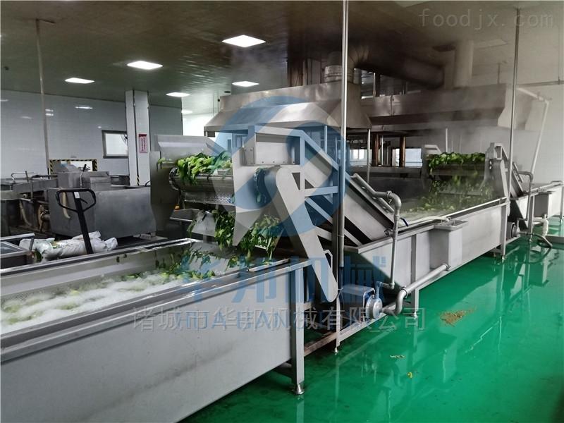 桑叶加工流水线  桑叶菜清洗机 果蔬机械