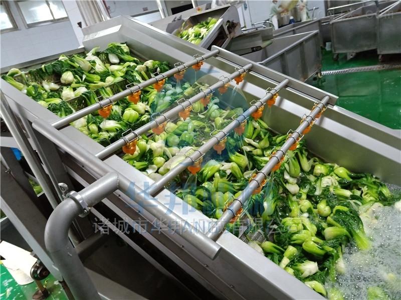 辣椒清洗设备 蔬菜清洗机 清洗干净 效率高