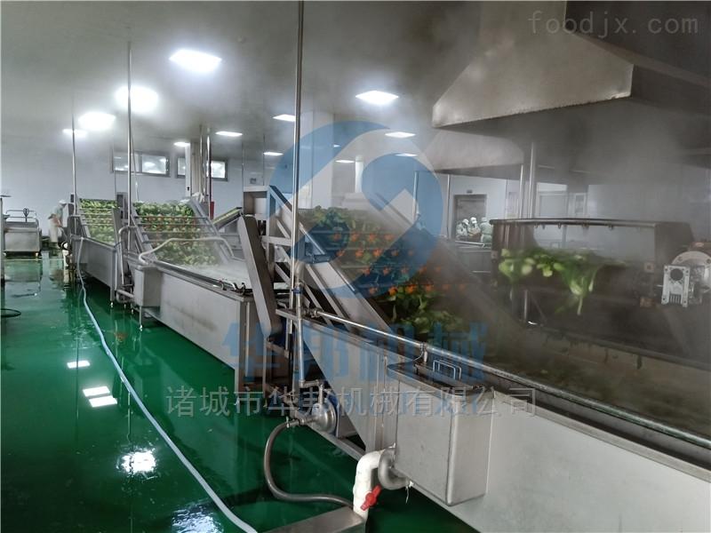 翻浪加喷淋全自动蔬菜清洗机 多功能洗菜机
