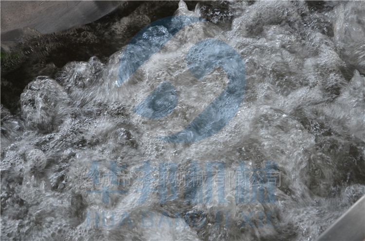 华邦2018常年生产净菜加工流水线 两年质保