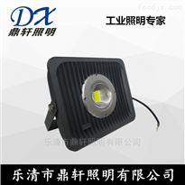 NTC2049鼎轩照明LED投光灯NTC2049-60W