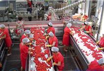 番茄醬分裝線
