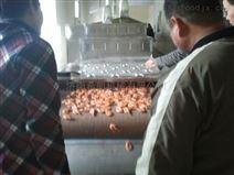 魚蝦微波烘烤微波熟化設備
