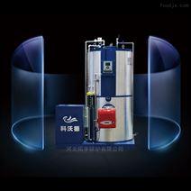 厂家直销燃气蒸汽发生器LSS1.0