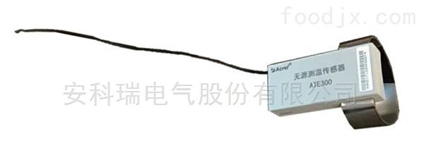 ATE300-無源傳感器功率表
