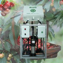 樱桃施肥机种类 大田果树水肥一体化设备