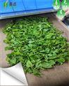 陕西微波茶叶杀青干燥设备厂家生产直销