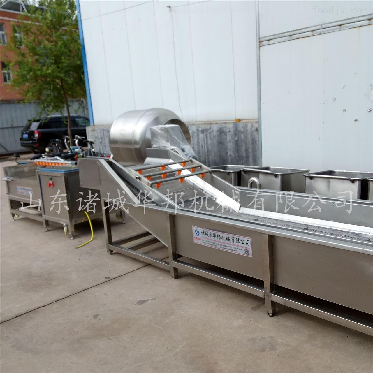 专业定制气泡蔬菜清洗机 果蔬清洗设备