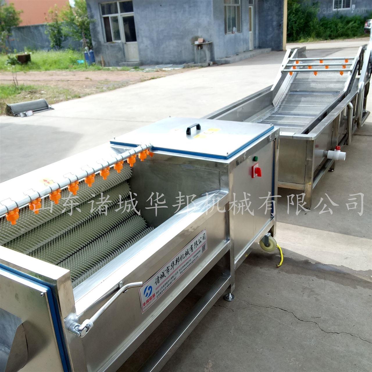 5000型蔬菜清洗机 果蔬清洗加工设备技术