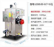 旭恩商用燃氣蒸汽發生器廠家高溫蒸汽鍋爐