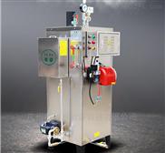 天然气蒸汽锅炉全自动蒸汽发生器