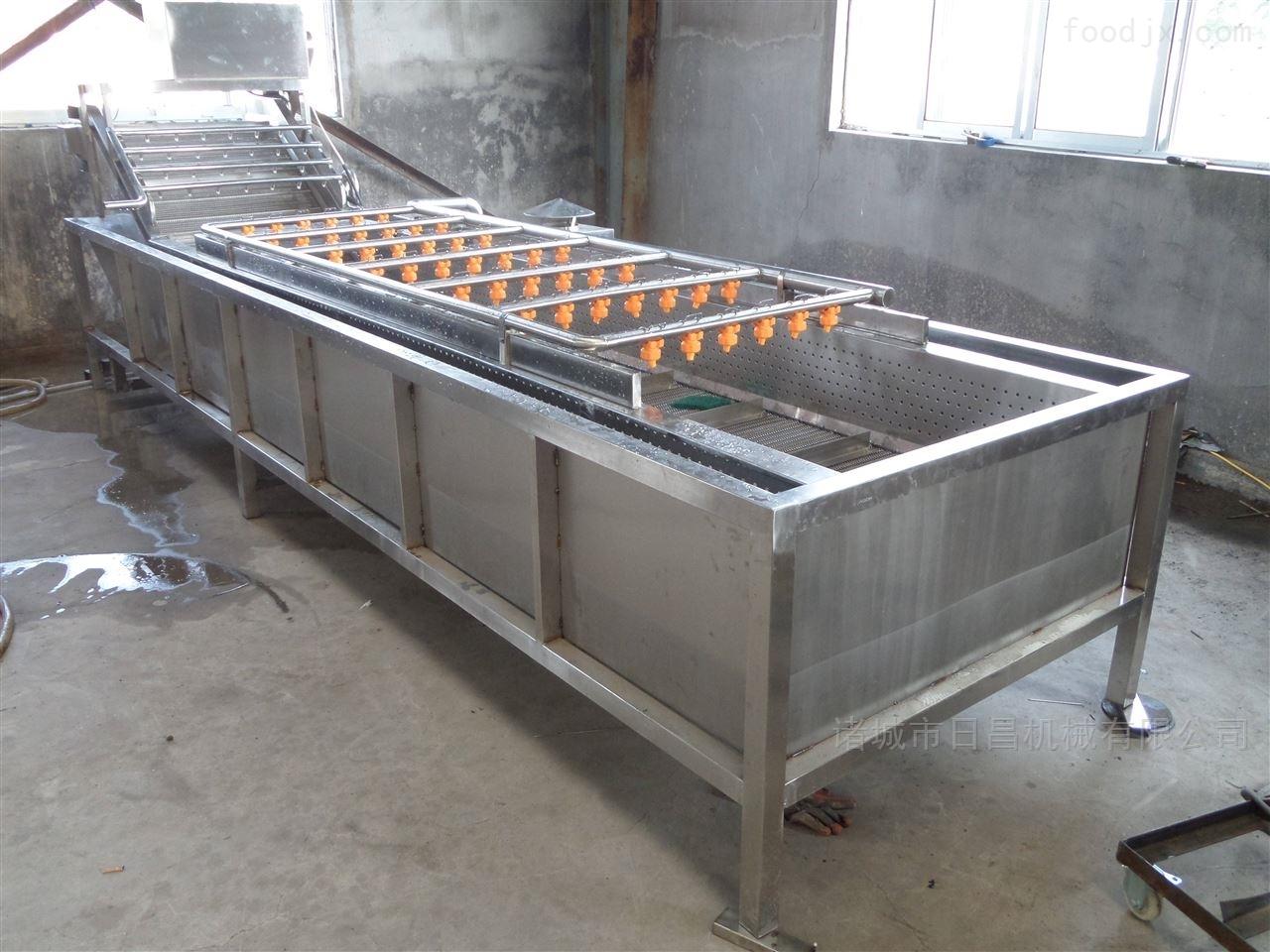 全新的板栗清洗机设备厂家