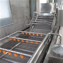 玉米喷淋式气泡清洗机