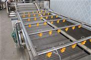 鑫烨机械果蔬蘑菇超声波清洗流水线设备