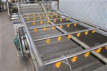 鑫燁機械果蔬蘑菇超聲波清洗流水線設備