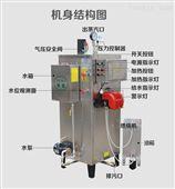 80公斤食品加工蒸汽发生器