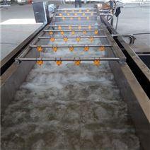 黄桃不锈钢全自动清洗机