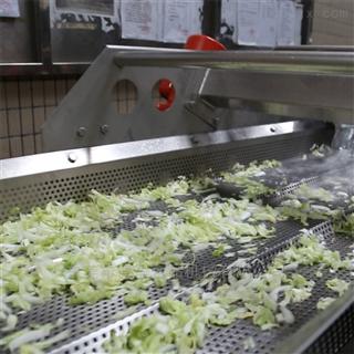 DY-4200果蔬加工设备果蔬清洗机