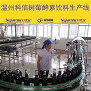 小型树莓酵素饮料生产流水线设备价格 新型树莓酵素发酵设备厂家