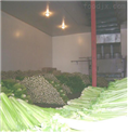 贵阳蔬菜保鲜冷库
