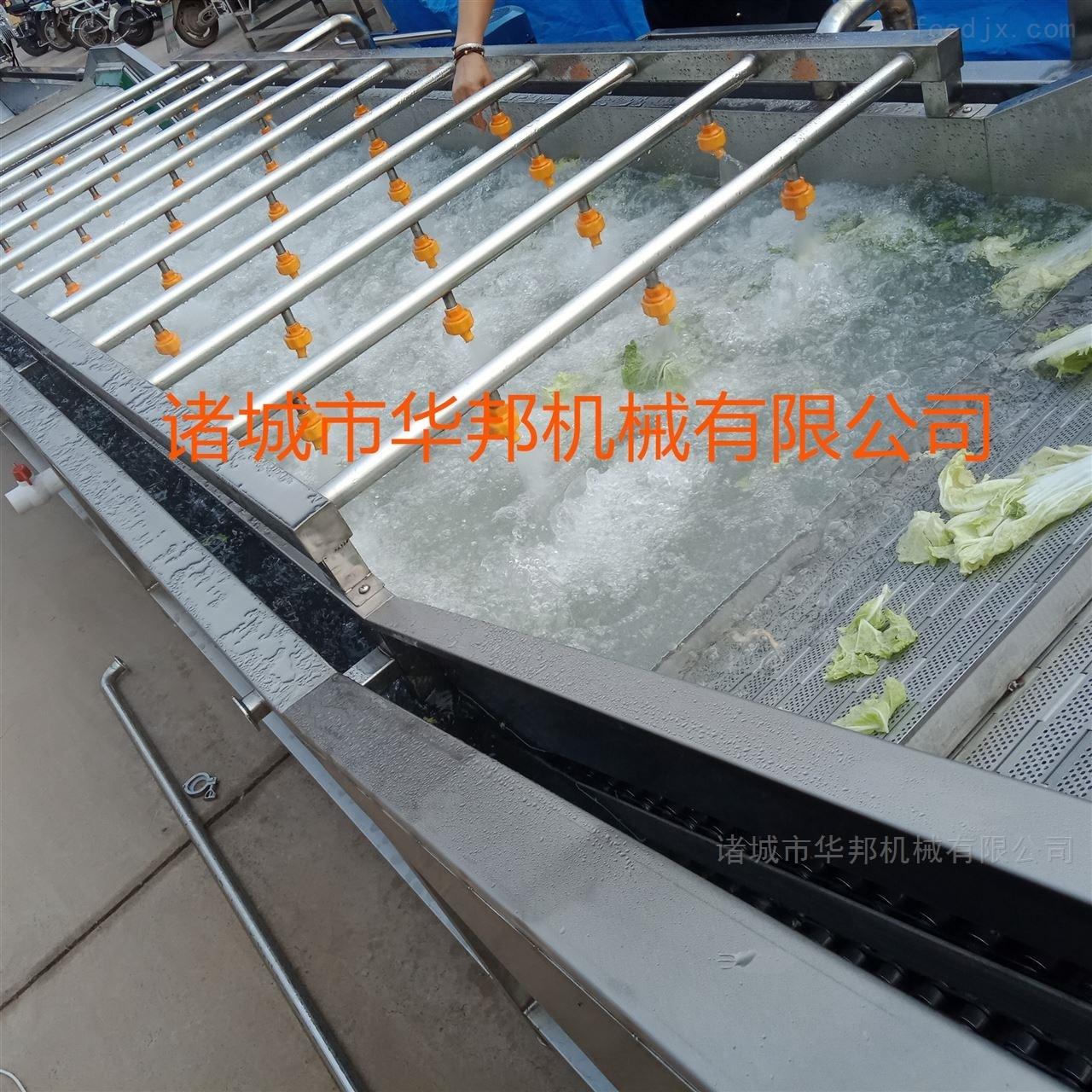 华邦专业研发果蔬清洗机 蔬菜清洗流水线