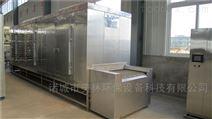 隧道式速冻机 -196℃低温冷冻机厂家直销