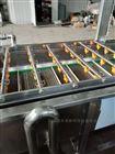 自动化蔬菜气泡清洗机