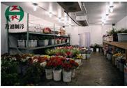 花卉保鮮冷庫 鮮花冷藏庫
