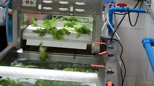 叶类蔬菜清洗去杂机