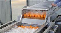 蔬菜高压喷淋清洗机