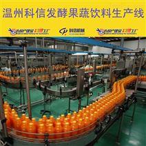 小型發酵果蔬汁飲料生產設備廠家