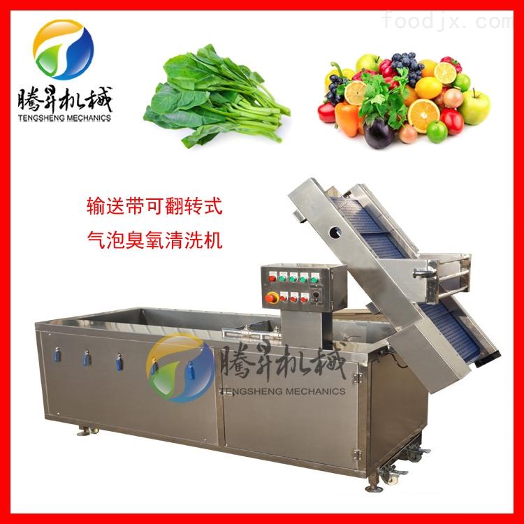 藕带清洗机 多功能蔬菜水果气泡冲浪洗菜机