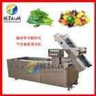 TS-X200藕带清洗机 多功能蔬菜水果气泡冲浪洗菜机