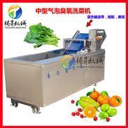 水果蔬菜清洗机 全自动气泡臭氧洗菜机