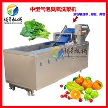 多功能蔬菜水果气泡清洗机 洗果机加工定制