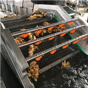 蔬菜气泡清洗机专业制造厂家
