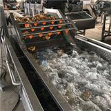 蔬菜清洗设备 全自动橘子气泡清洗机