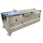 地瓜去皮机  蔬菜清洗机 可根据要求定制
