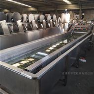 QP-4000桑葚清洗加工设备节水高效率