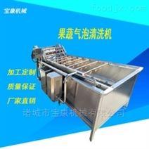 供应多功能蔬菜气泡清洗机