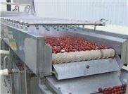 專業生產果蔬清洗流水線 全自動蔬菜清洗機
