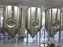 厂家直销 供应国禹不锈钢啤酒罐