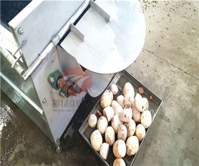荔浦芋头脱皮清洗流水线处理一吨的产量