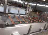 SZ6000-厂家热销全自动果蔬清洗生产线