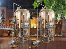 自酿精酿啤酒设备500L一体化糖化罐