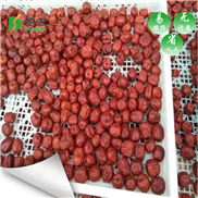 SD-RB6P-红枣用空气能烘干设备烘干有什么优势