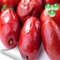 陕北红枣烘干工艺 西安圣达环保设备